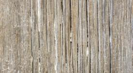 Reclaimed White Oak barn siding